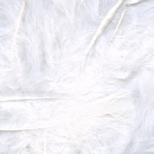 White Feathers for Balloons - Eleganza 50g Bag 1PK